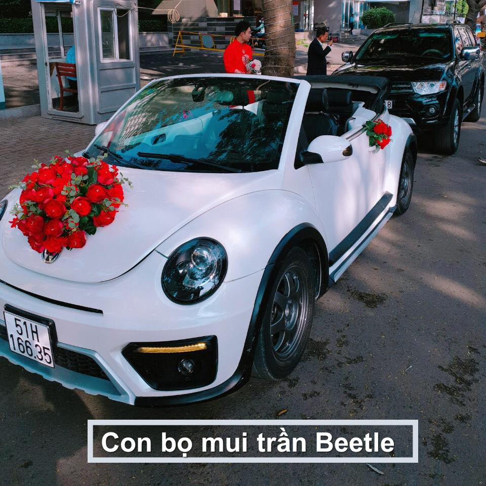 xe hoa con bọ mui trần trắng