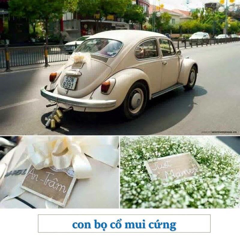 xe cổ Volkswagen kem
