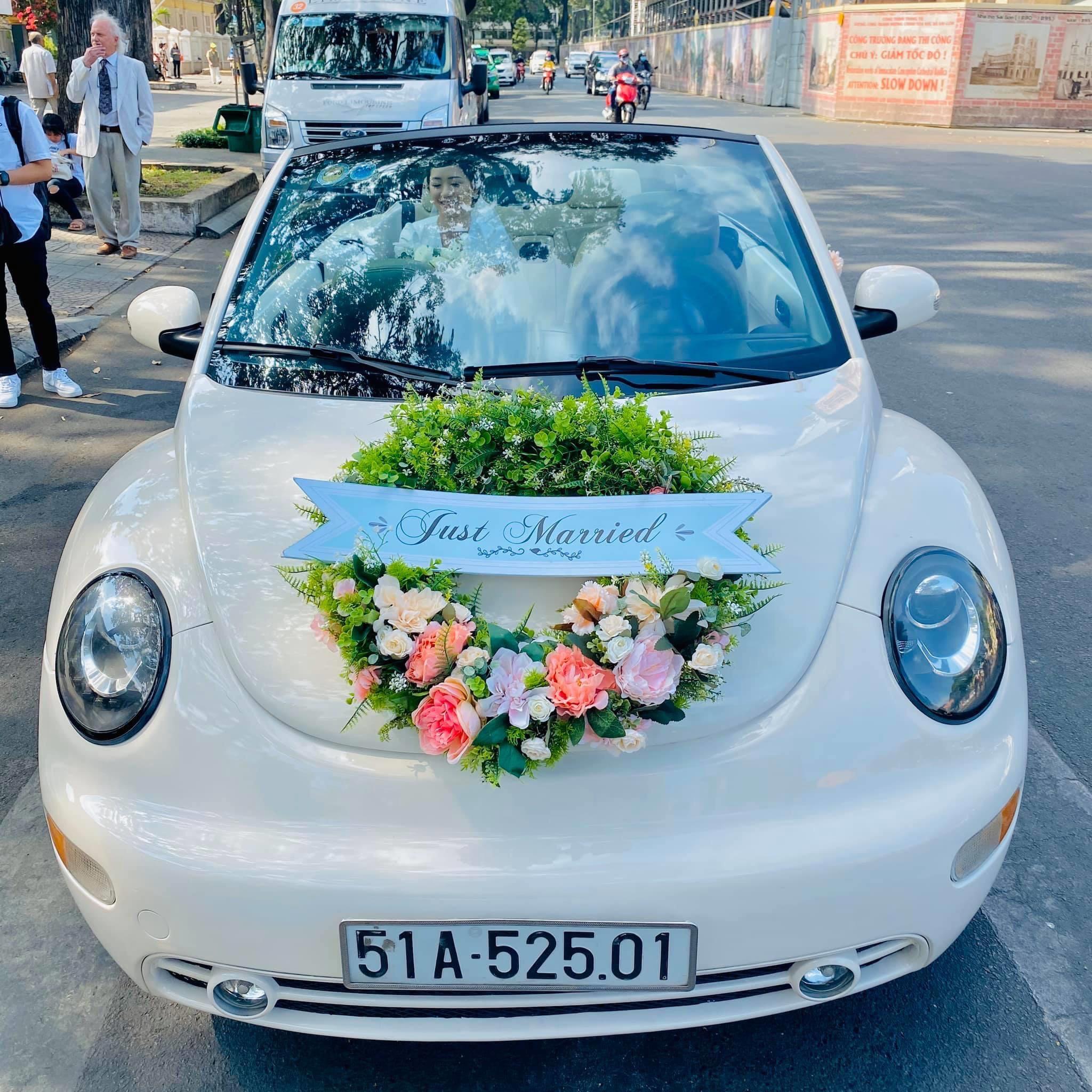 xe hoa con bọ Volkswagen new Beetle